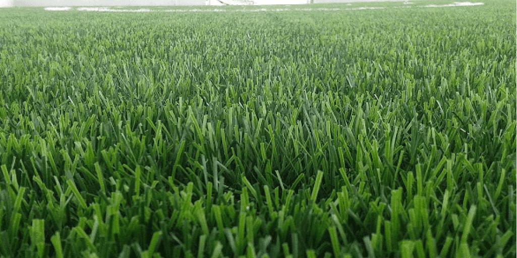 beneficios de la grama sintética