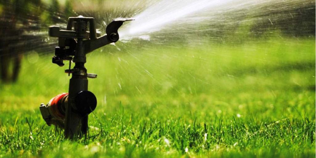 Ahorrar agua y mantener el jardín verde con grama sintética