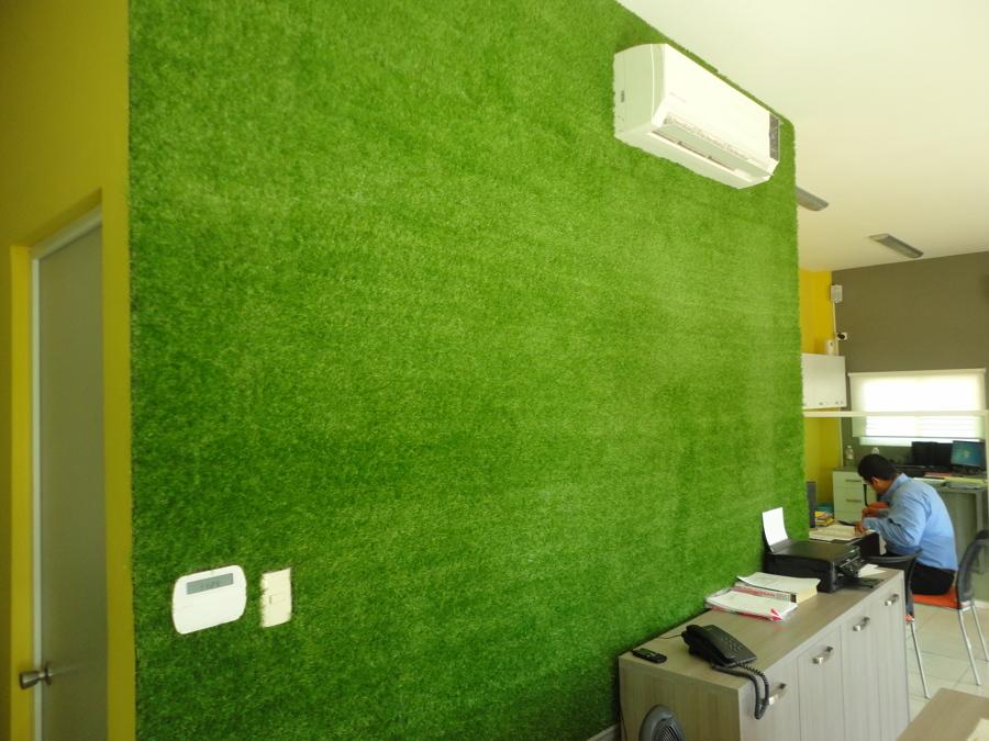 jardines verticales en casa u oficina