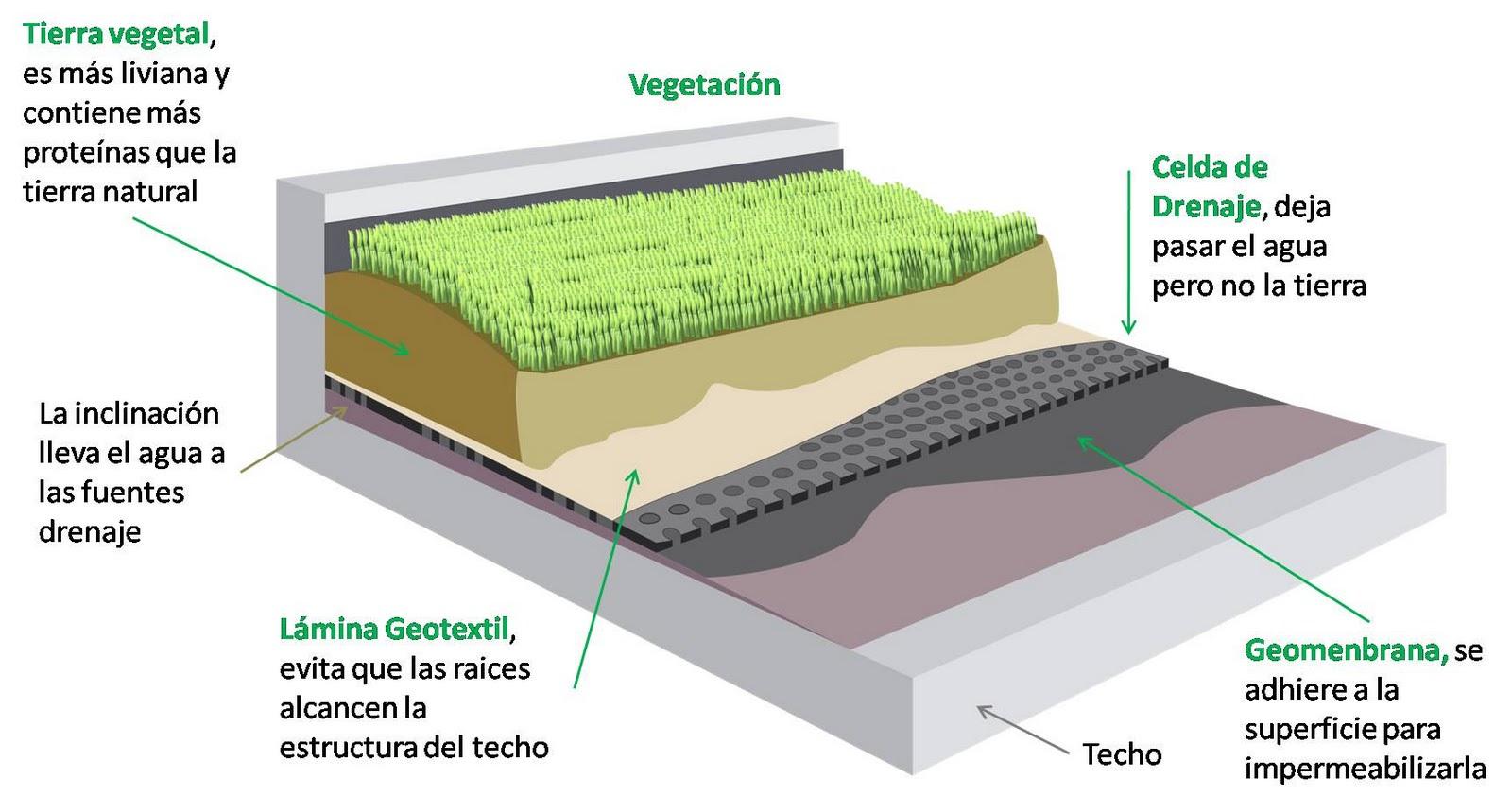 techos verdes para mitigar el impacto ambiental del calentamiento global