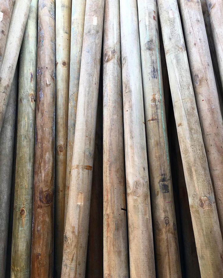 parques de madera pino pátula inmunizado