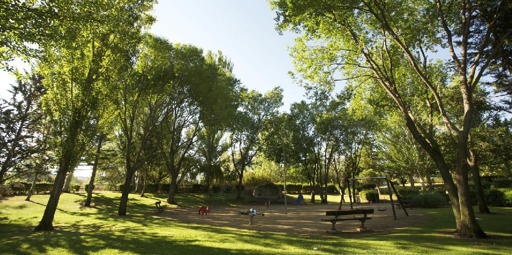 cuidar las zonas verdes y parques de nuestras ciudades y su importancia