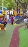 cuidar los parques públicos