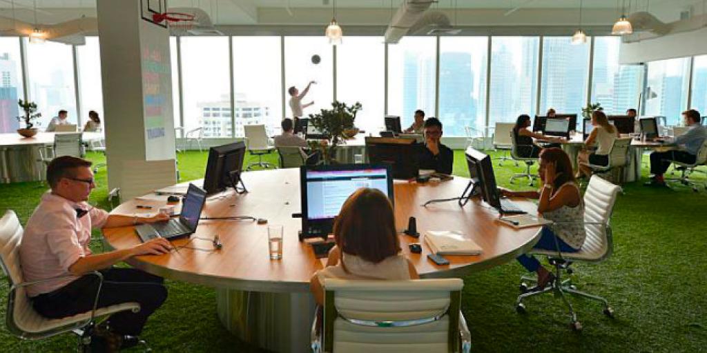 renovar tu oficina con grama sintética y ventanas grandes