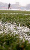 campos deportivos híbridos y su composición